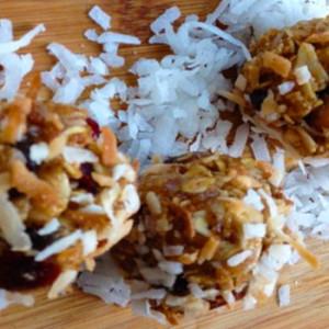 Oatmeal Cranberry Coconut Breakfast Bites